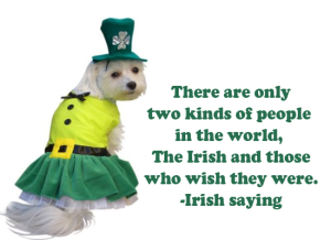 the irish (& the dogs?)