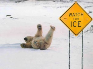 me falling on the ice