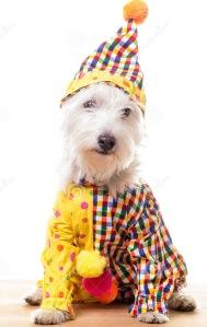 ciown dog (1)