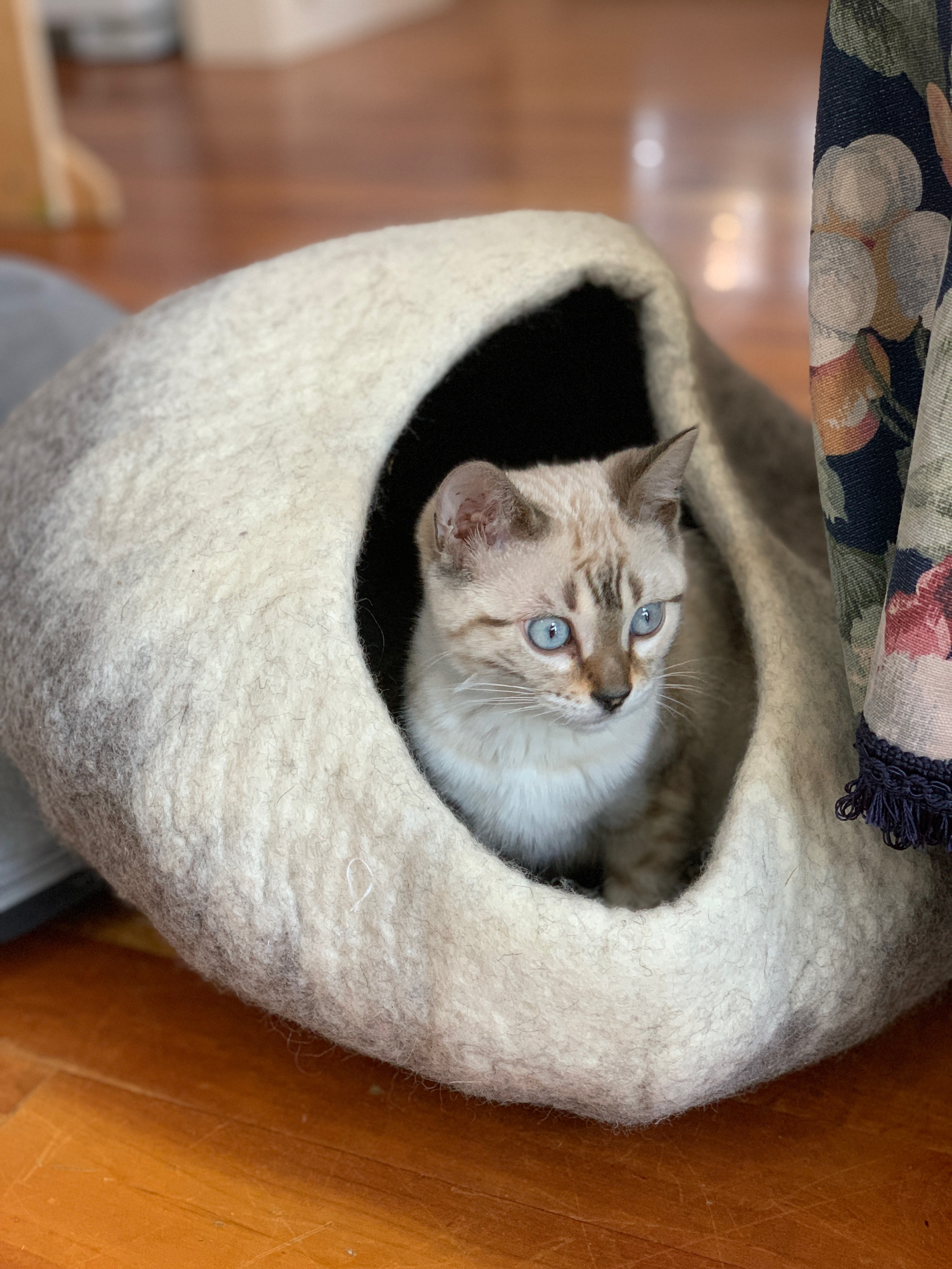 ariel in her cave